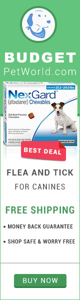 Nexgard is a soft beef-flavored chews that kills fleas and ticks on your dog.