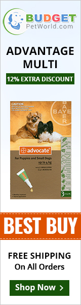 Advantage Multi, also known as Advocate kills and controls fleas, heartworms, gastrointestinal worms. This topical solution is easy to apply and safe for adult canines and puppies older than 7 weeks of age.