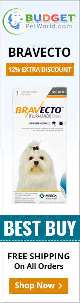 Bravecto is an innovative first flea and tick control oral chew for dogs. The tasty chew offers total protection from flea and ticks for over 12 full weeks.