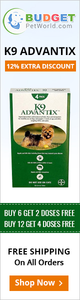 K9 Advantix is a spot-on preventive that combats efficiently against multiple parasites including fleas and ticks.